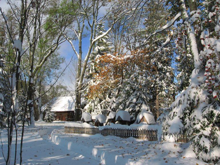 Dwór Moniaków I Pasieka Zimą Fot. Roman Ciok