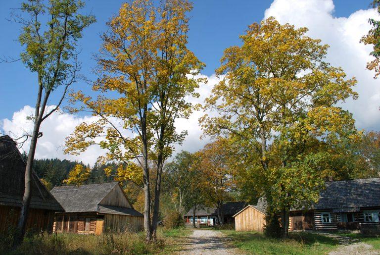 Skansen Jesienią Fot. Roman Ciok